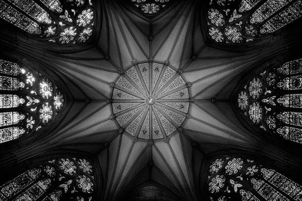 Gotica. Contrappunti d'architettura